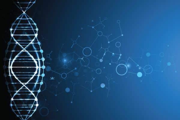 ADN - Refonte système information - Digitalisation - Darest Informatic